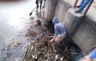 پاکسازی حوضچه دریچه های تنظیم آب کشاورزی در منطقه بارکوسرای لاهیجان